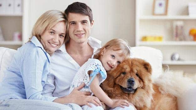 Wills & Trusts dog-young-family Direct Wills Reading
